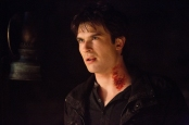 TVD 4x14 Down the Rabbit Hole -  Damon