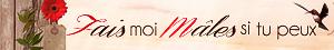 FMMSTP