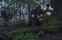 Outlander - S01P02 - Stills 1