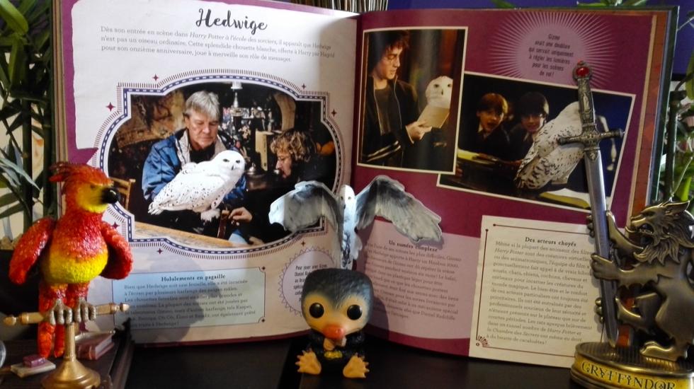 Wizarding-World---La-magie-du-cinéma-Vol.2---Créatures-Fascinantes-Extrait-5